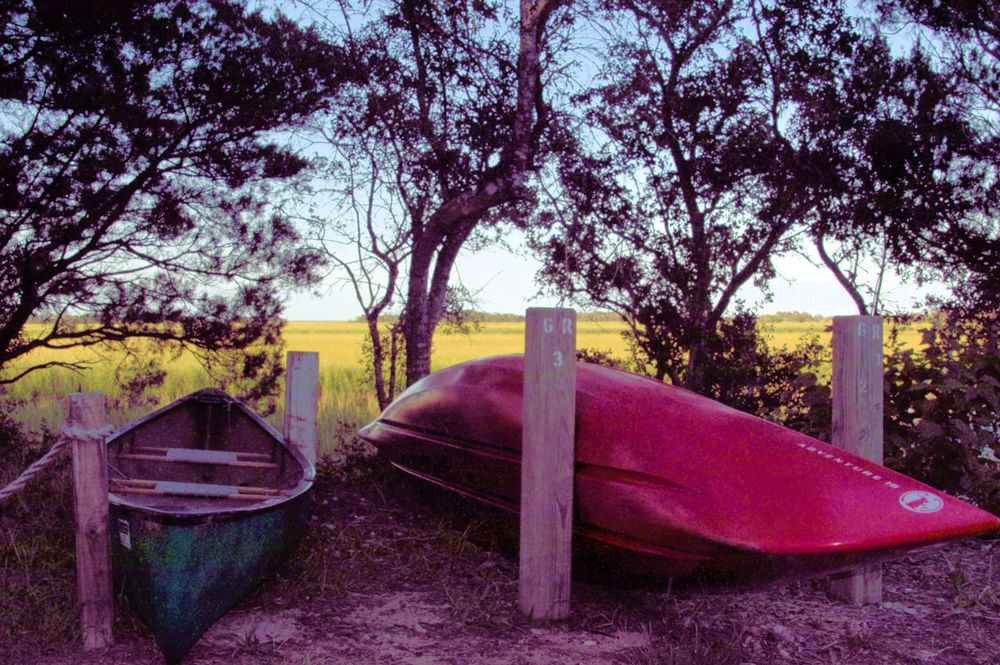Marsh Canoes - SDIM3989 -1.jpg