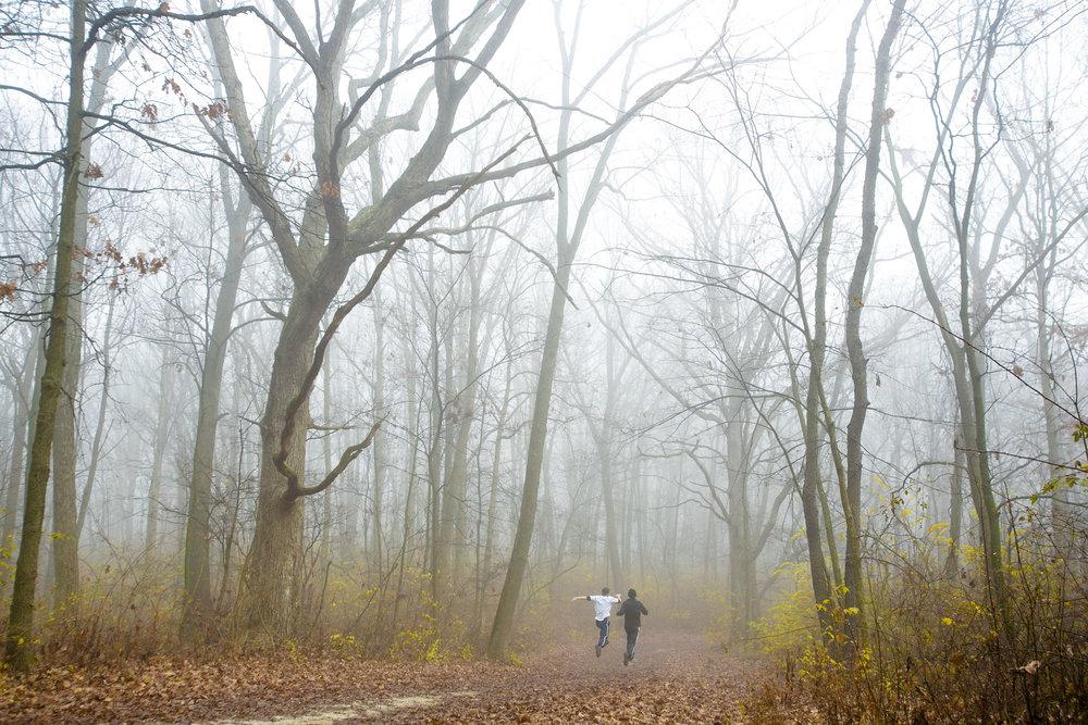 Region 7_Cap Sauers & Teasons Woods03.jpg