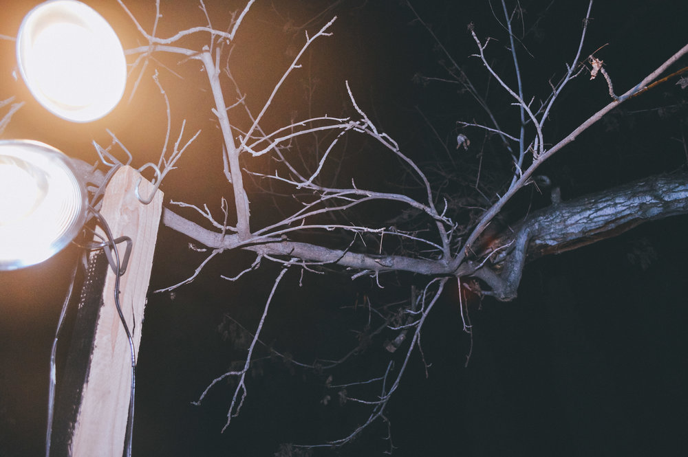 Backyard Party [Halloween Edition] (29 of 67).jpg