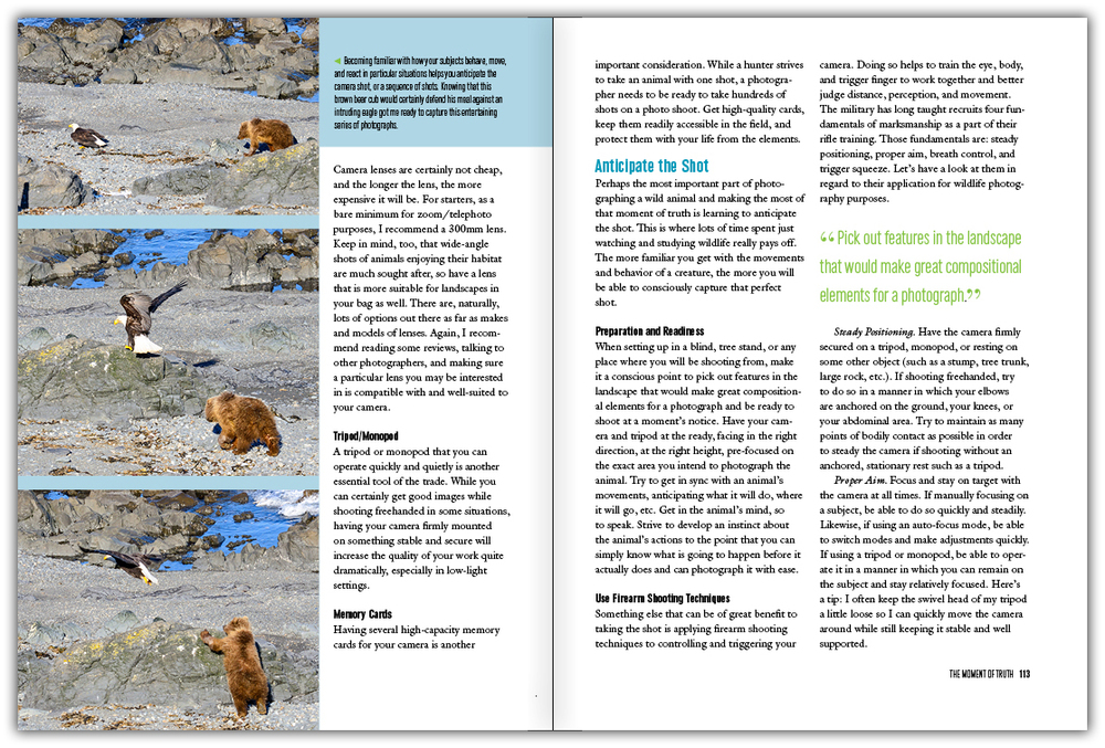 book_classen_wildlife2.jpg