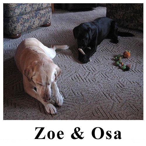Zoe-Osa.jpg