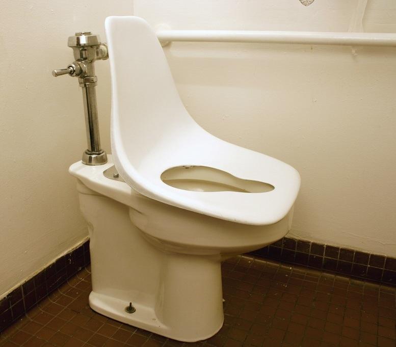 Eames Toilet Seat
