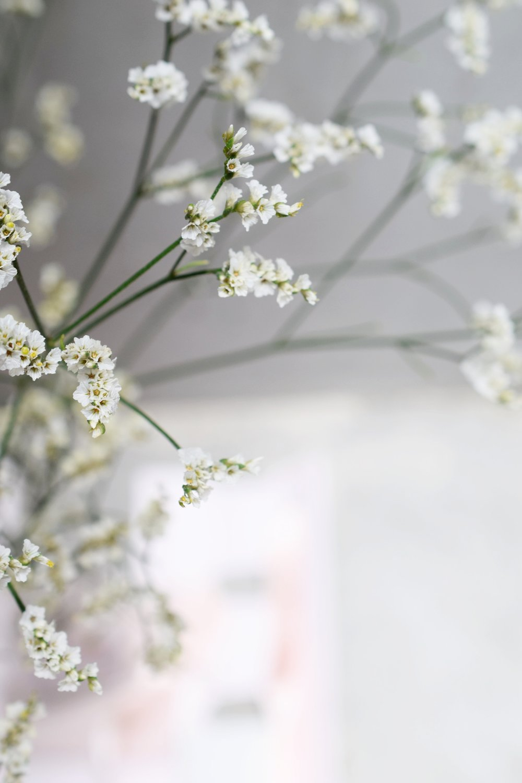 ISLEjewellery.flowers