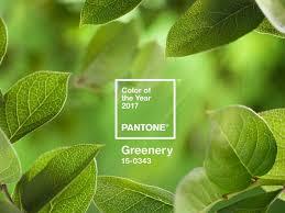 green 1.jpeg