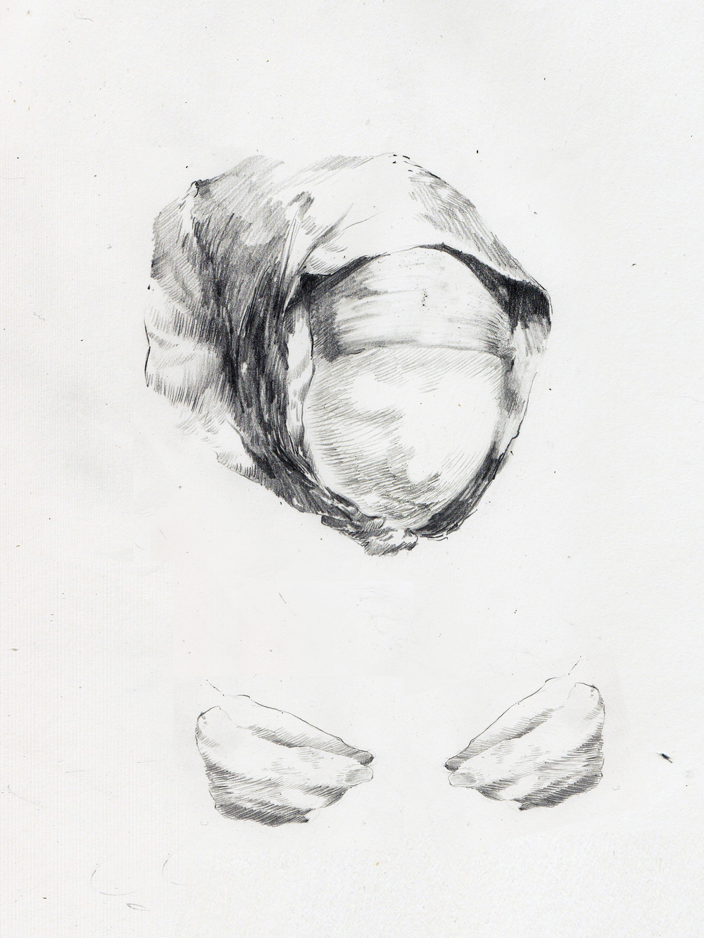 Graphite on paper, 2014.