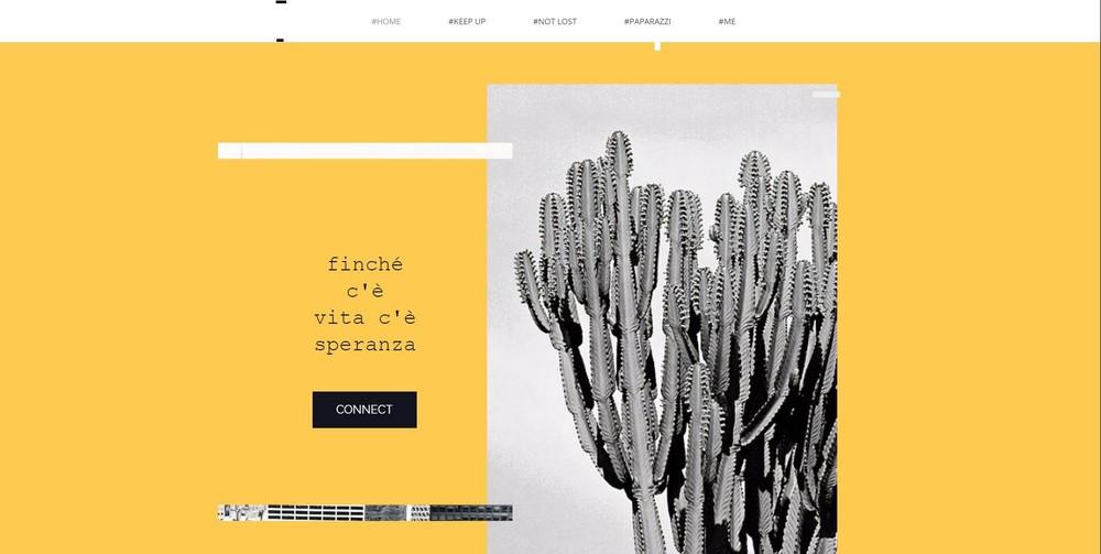 fiona dickson roberto webdesign photgraphy design sydney.jpg