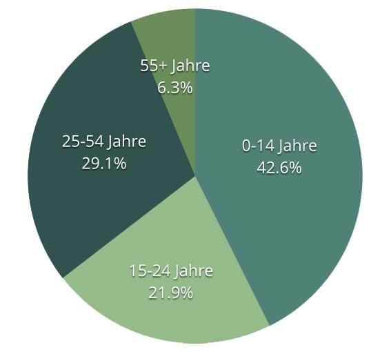 Bevölkerung Afghanistan 2013 - Alter (%) Quelle: CIA World Fact Book