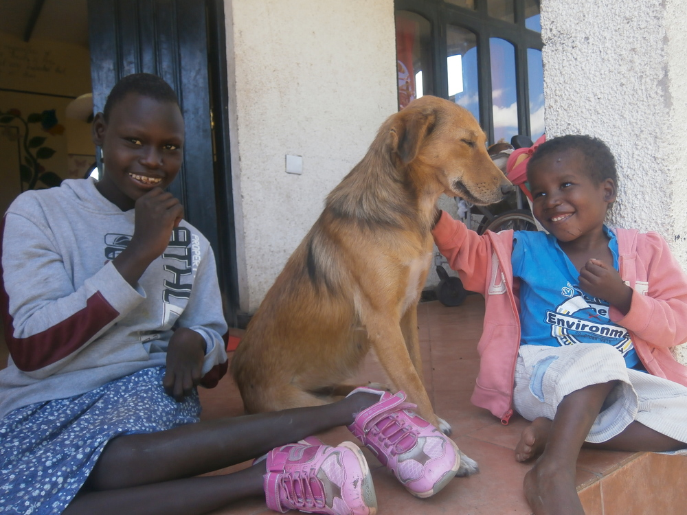 Our new arrival Agnes (left) with Miss Tudor (center) and Johnson with the look of utter adoration for his best friend.