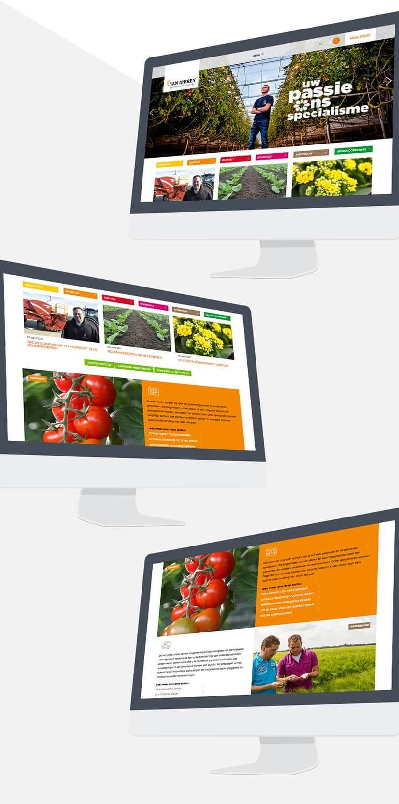 van-iperen-website.jpg