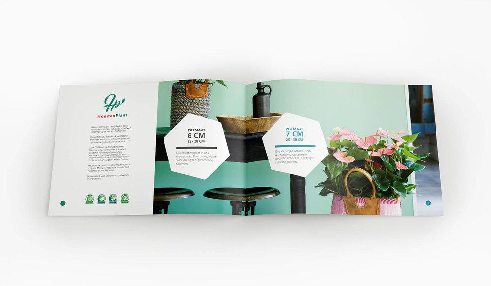 Houwenplant intro pagina 6,7.jpg