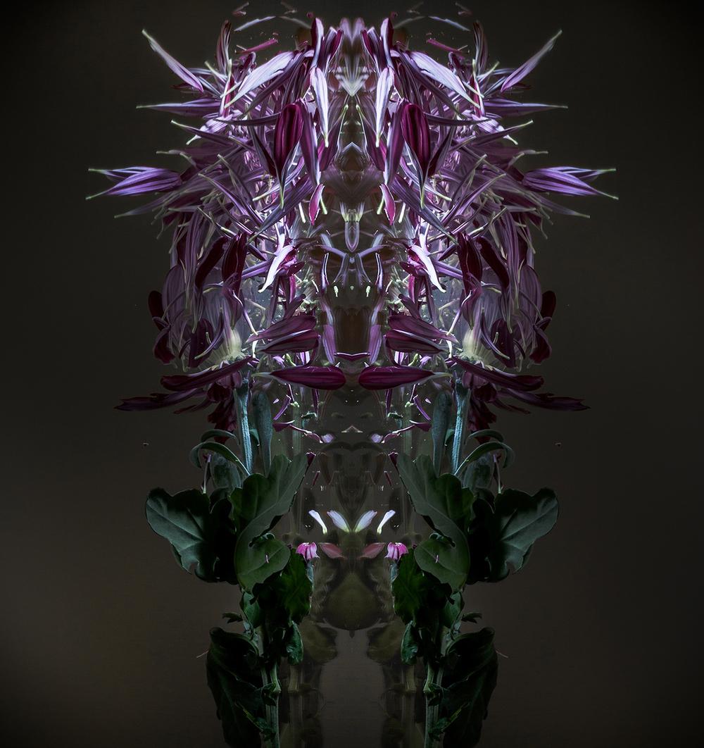 Monsters Three