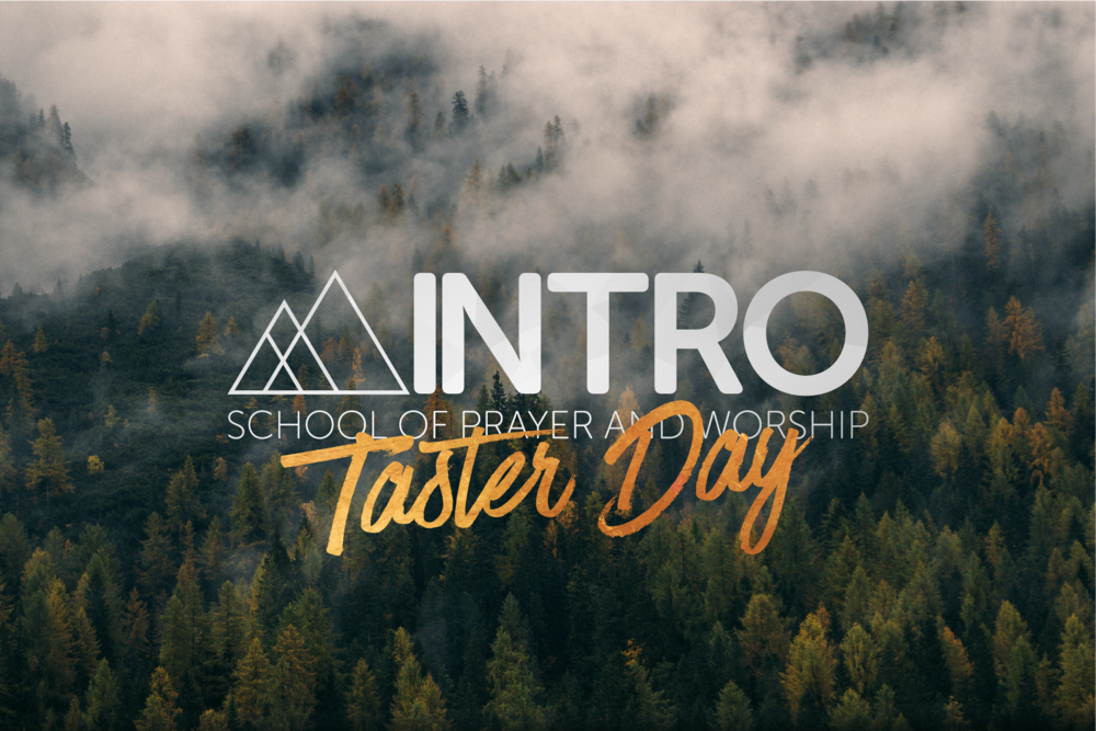 Intro Taster Dy