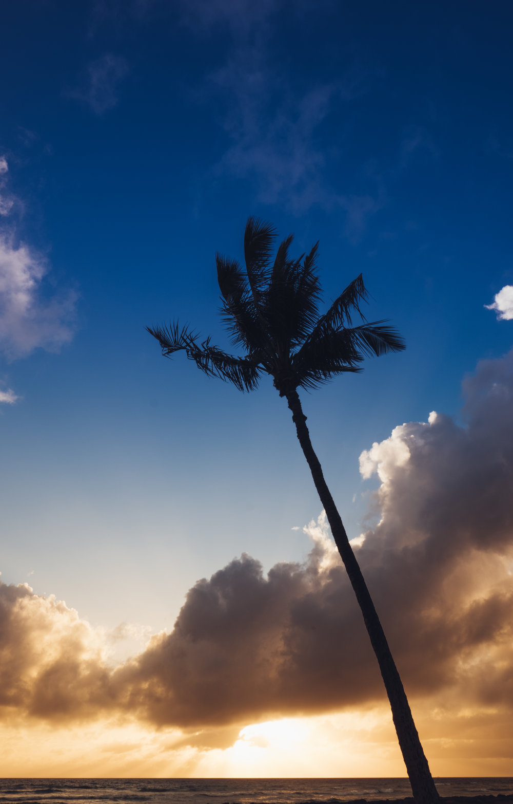 Maui - Kihei