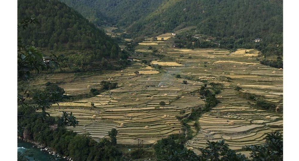 Punakha+dzong.jpg