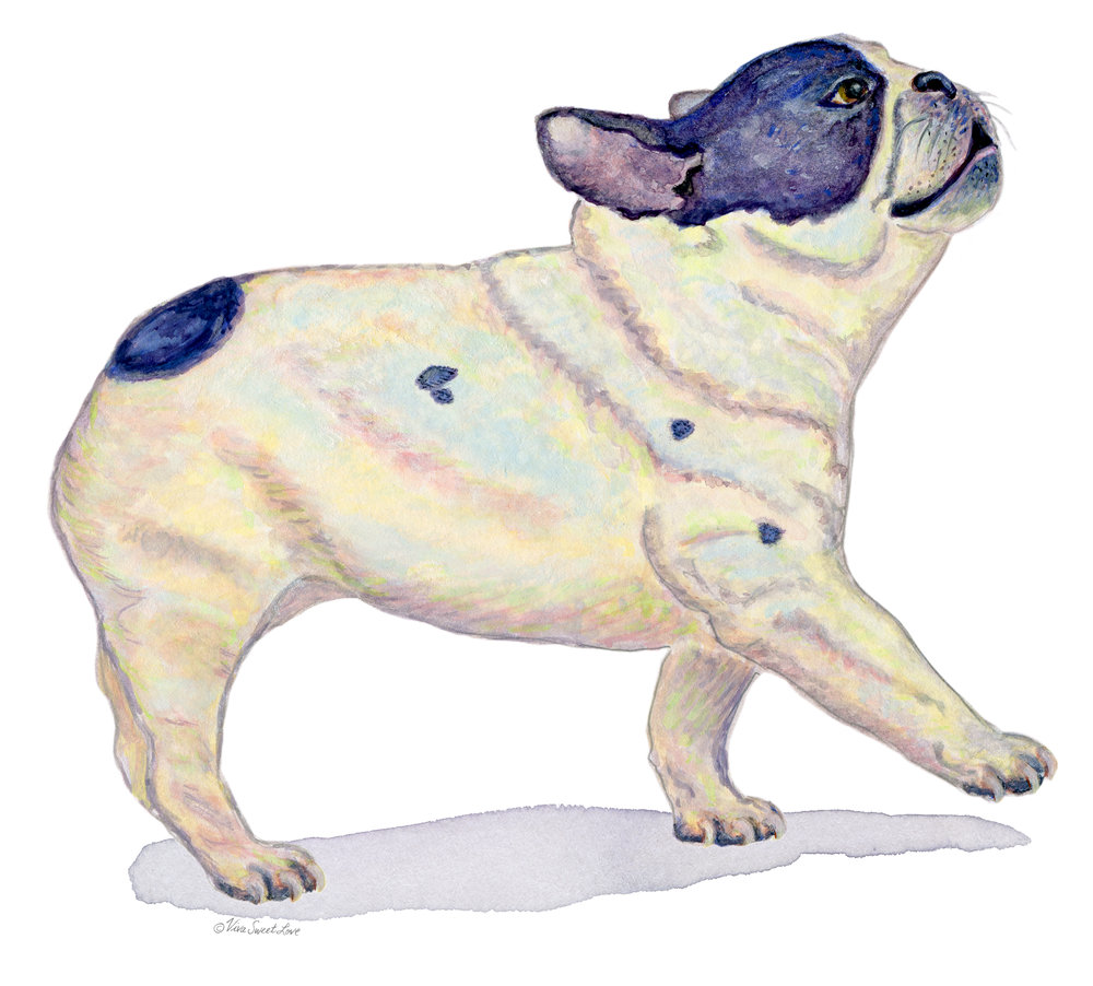 French Bulldog Artprint RedBubble