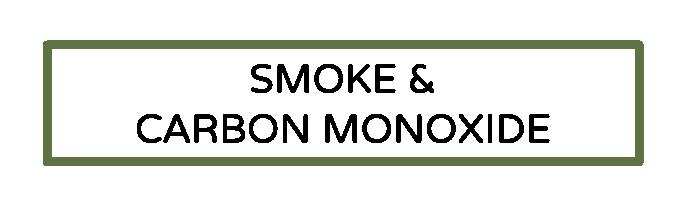 Smoke and Carbon Monoxide.png