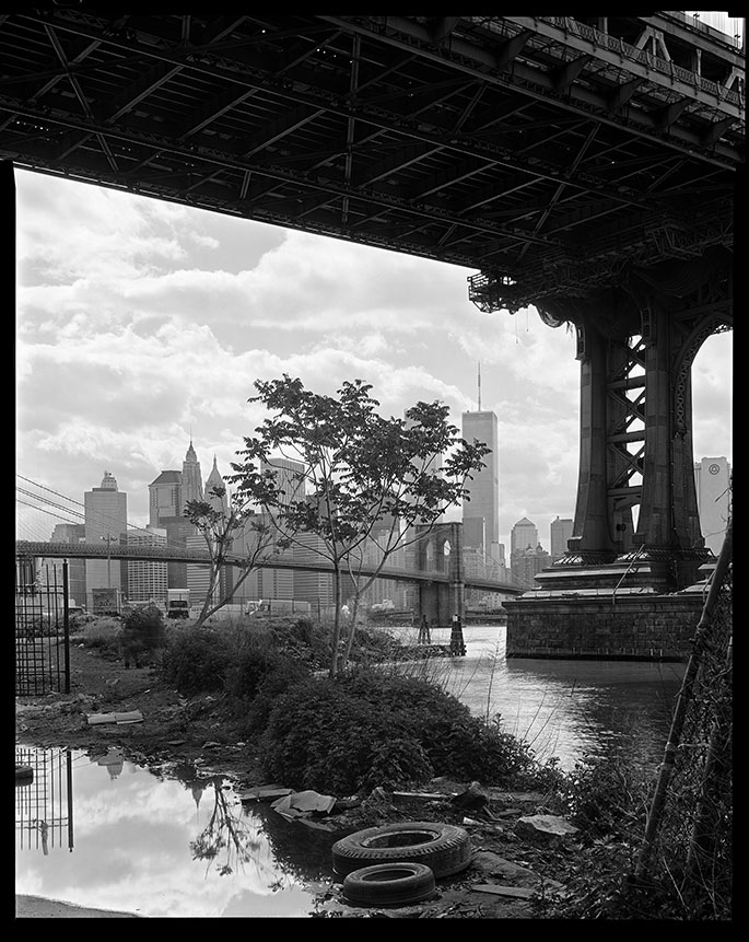 Brooklyn to Mann 8x10.jpg