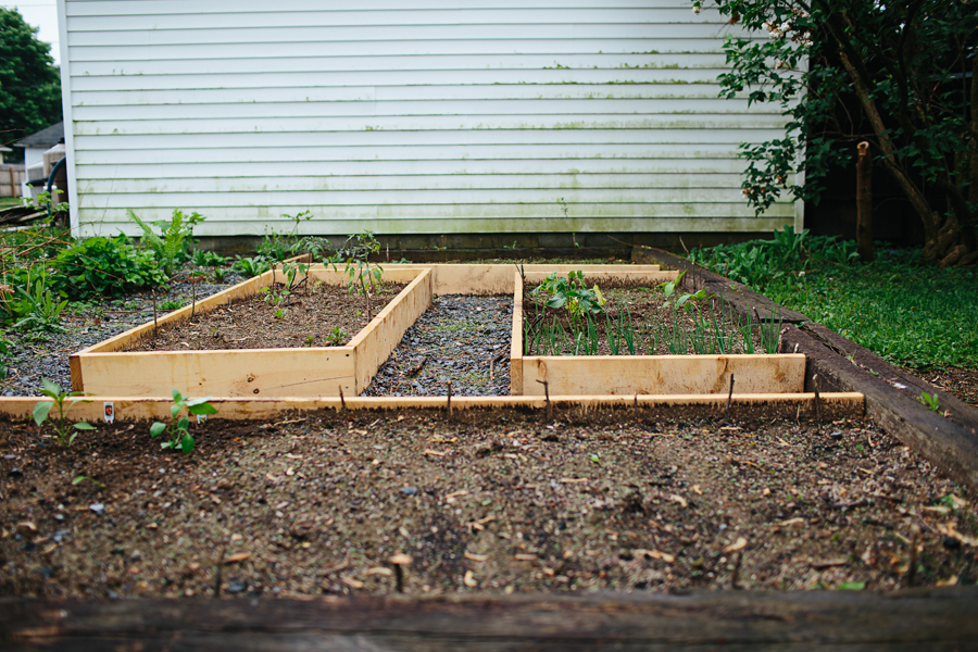 brookecourtney_gardenbeforephotos-10.jpg