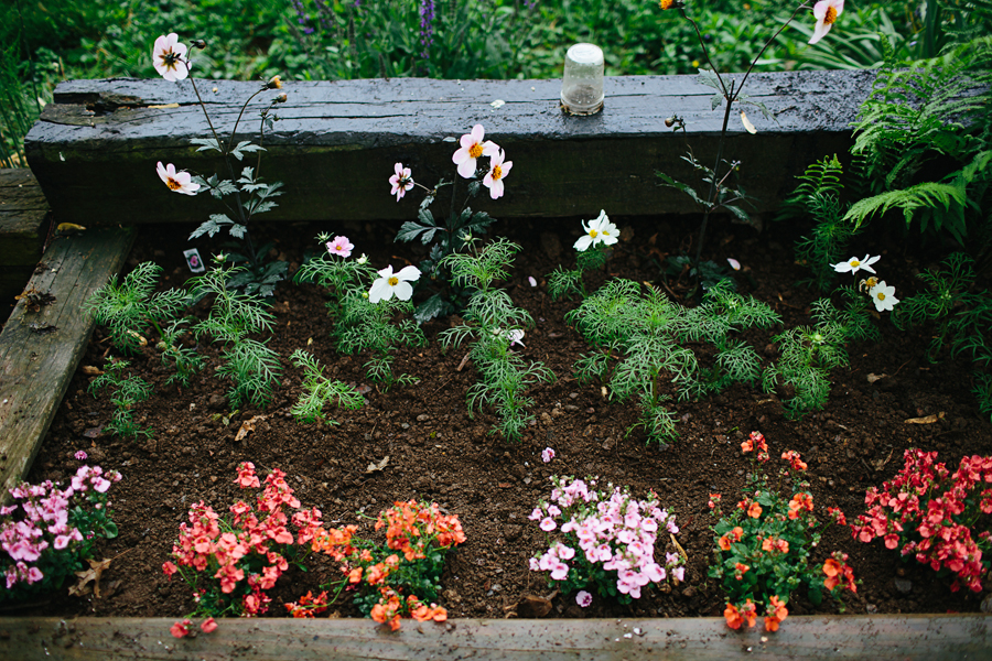 brookecourtney_gardenbeforephotos-17.jpg