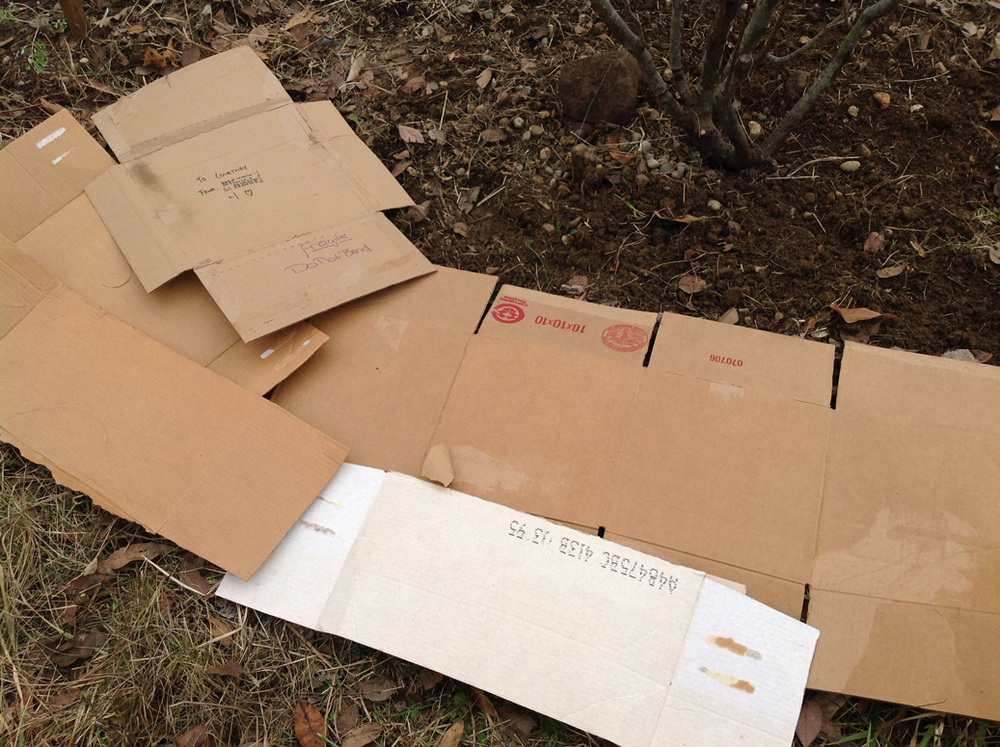 Cardboard finds new life as mulch.