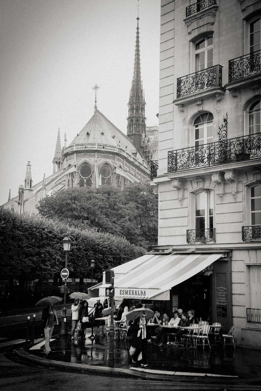 street corner, Notre Dame, Paris 2014.