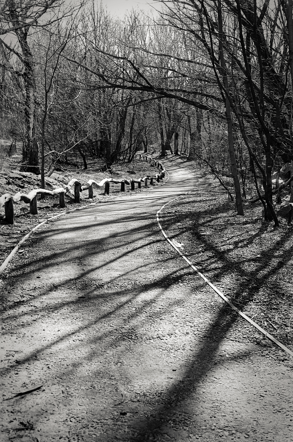 winding path, Central Park, NY 1997.