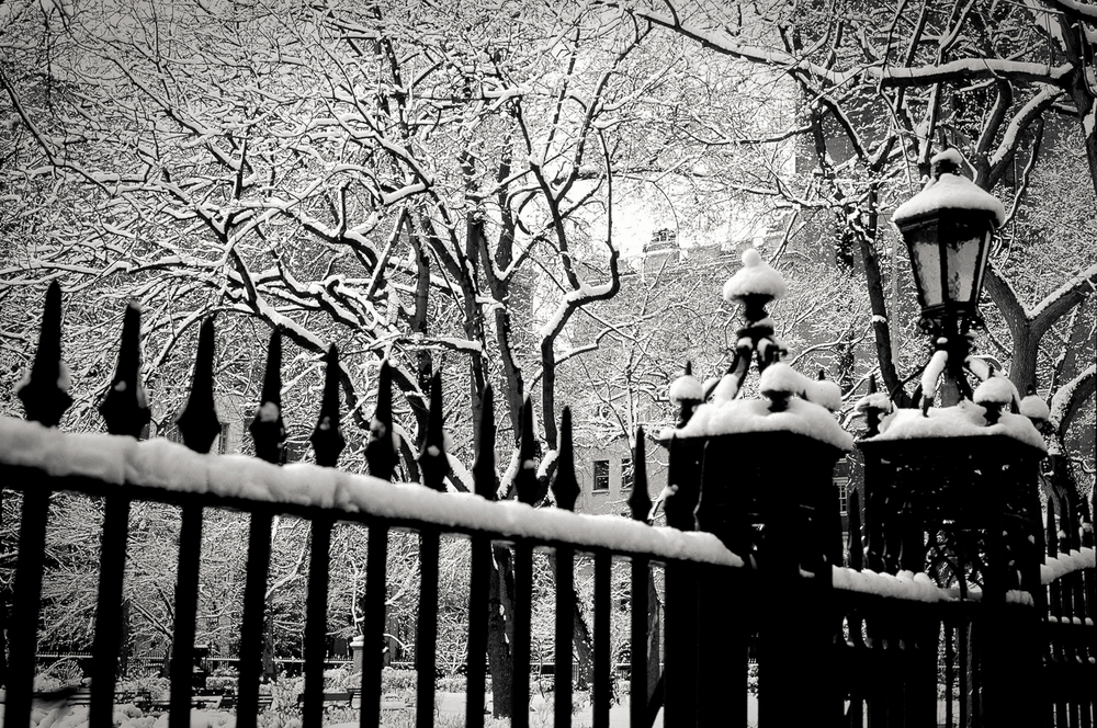 snow on fence, Gramercy Square Park, NY 1999.