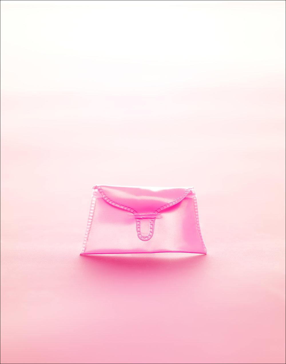 purse(for portfolio).jpg