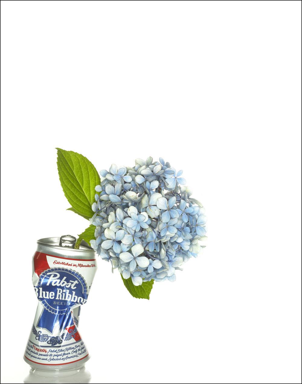 pabst blue flower border.jpg