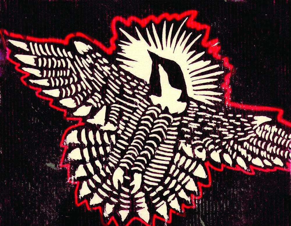 falcon081.jpg