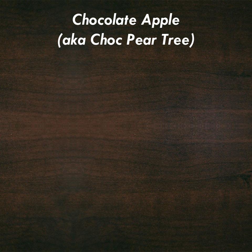 choc apple.jpg