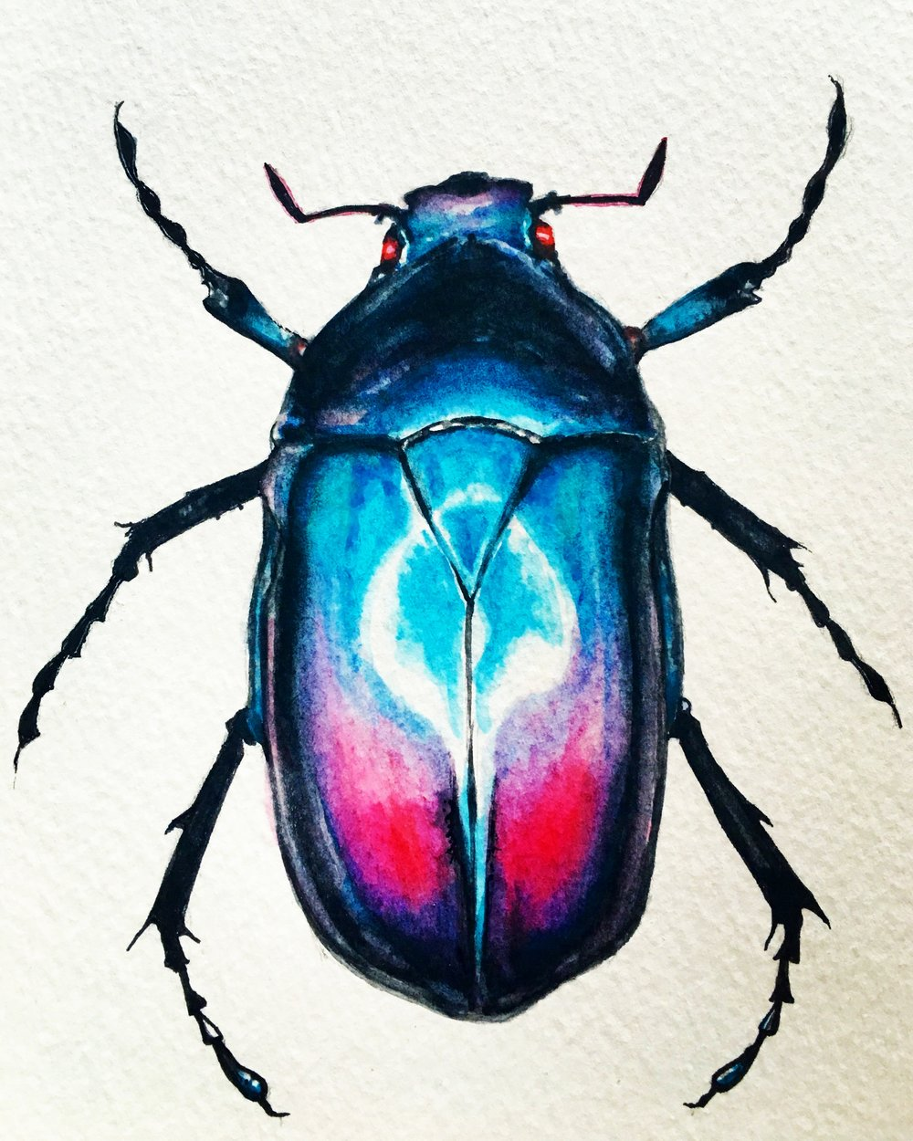 Watercolor-Beetle-Dustin-Goolsby-Art.JPG