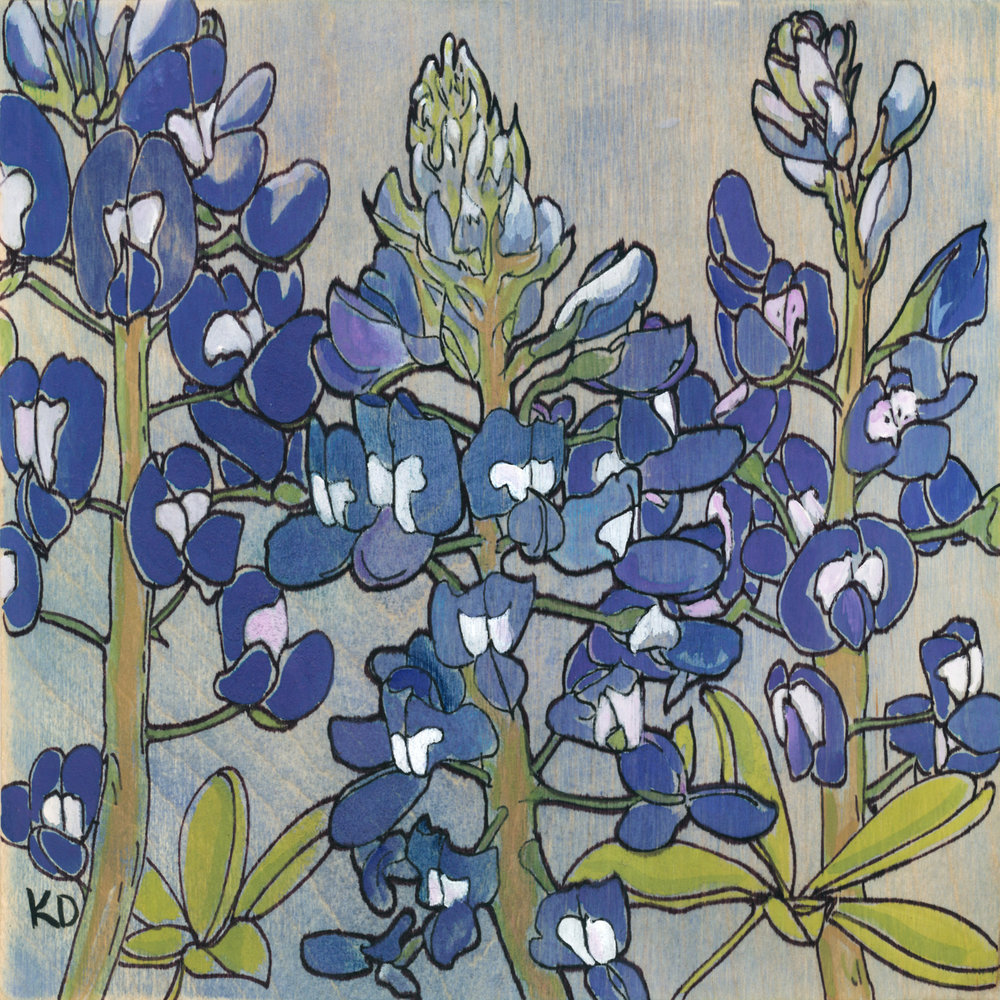 SOLD Baby Bluebonnets