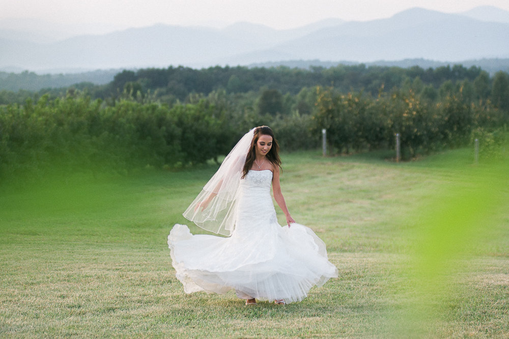 Bridal Portraits, Country Bridal, Outdoor Bridal Portraits, Summer Mast Photography