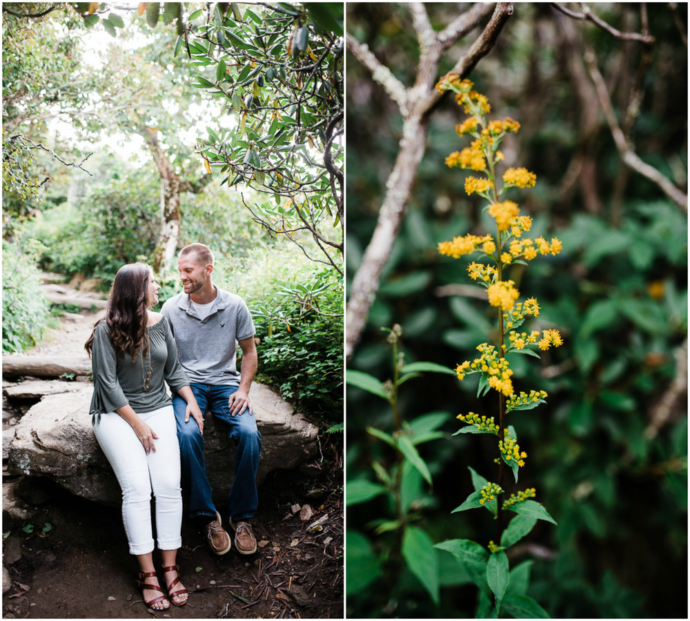 Engagement Pictures, Mountain Engagement Photo, Blue Ridge Mountain 3.jpg