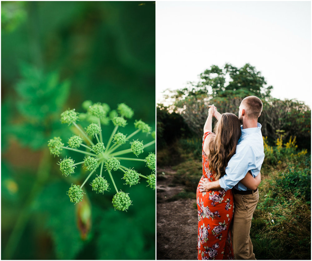 Engagement Pictures, Mountain Engagement Photo, Blue Ridge Mountain 8.jpg