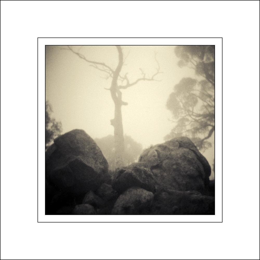 Mt Rogers fog lomo 2 framed.JPG