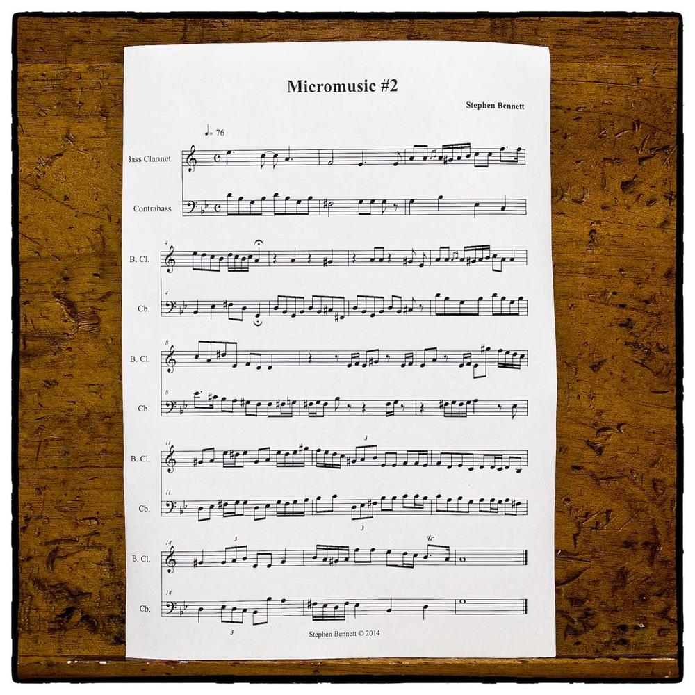 Duet for Bass Clarinet and Double Bass by Stephen Bennett