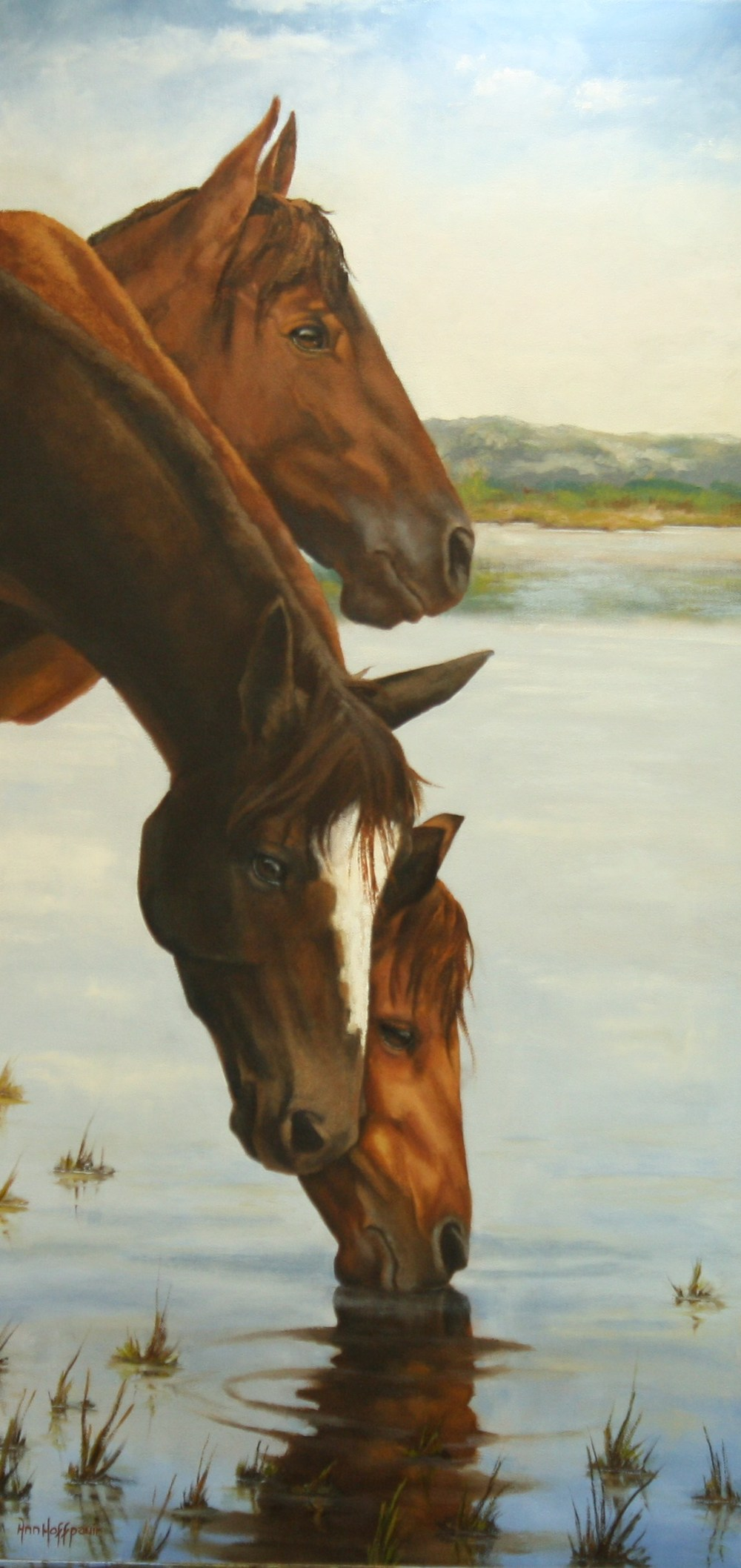 Watercolor artists in texas - Visit Davis Co Gallery To See The Featured Art For The Upcoming Rites Of Spring Invitational Show