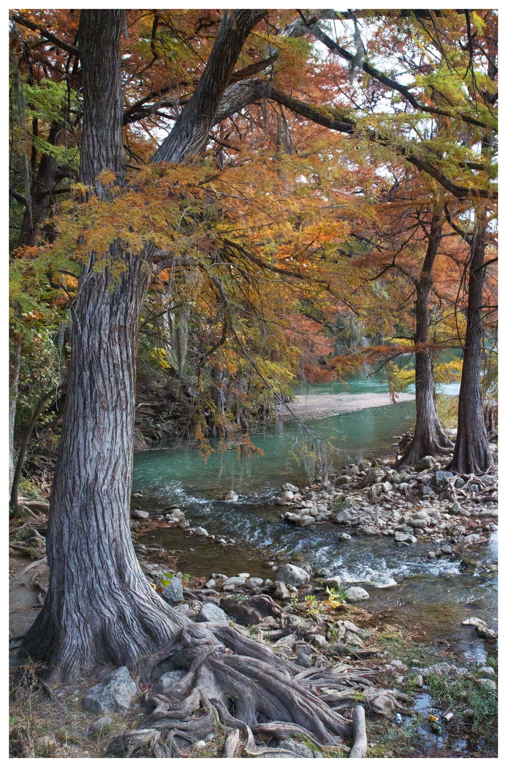 ClaytonGardinier_Guadelupe River Gruene Texas_16X20_ColorPhoto.jpg