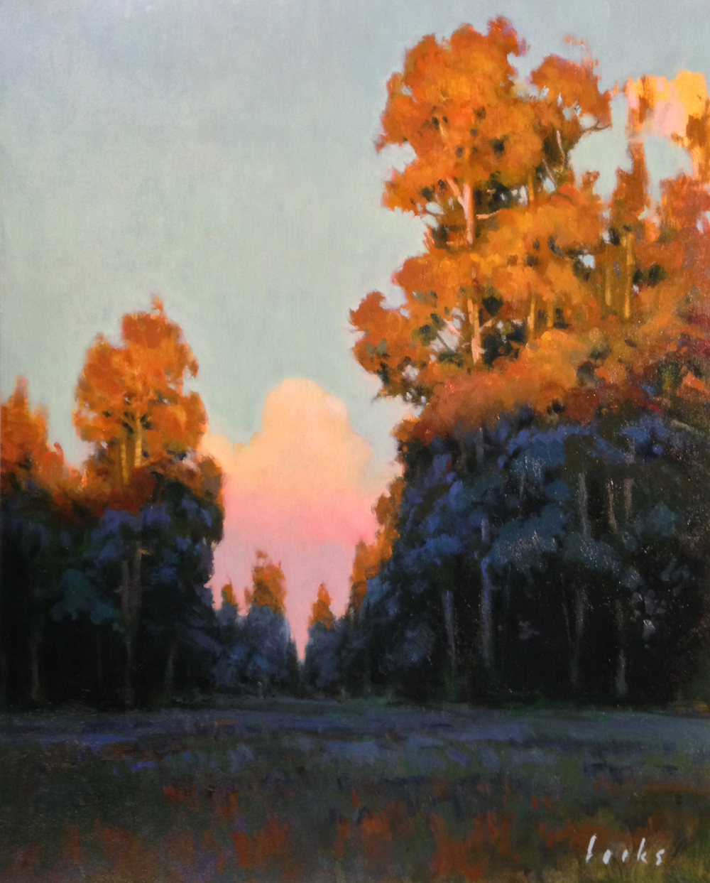 David Forks_Sundown in Cypresswood_20x16_Oil.JPG