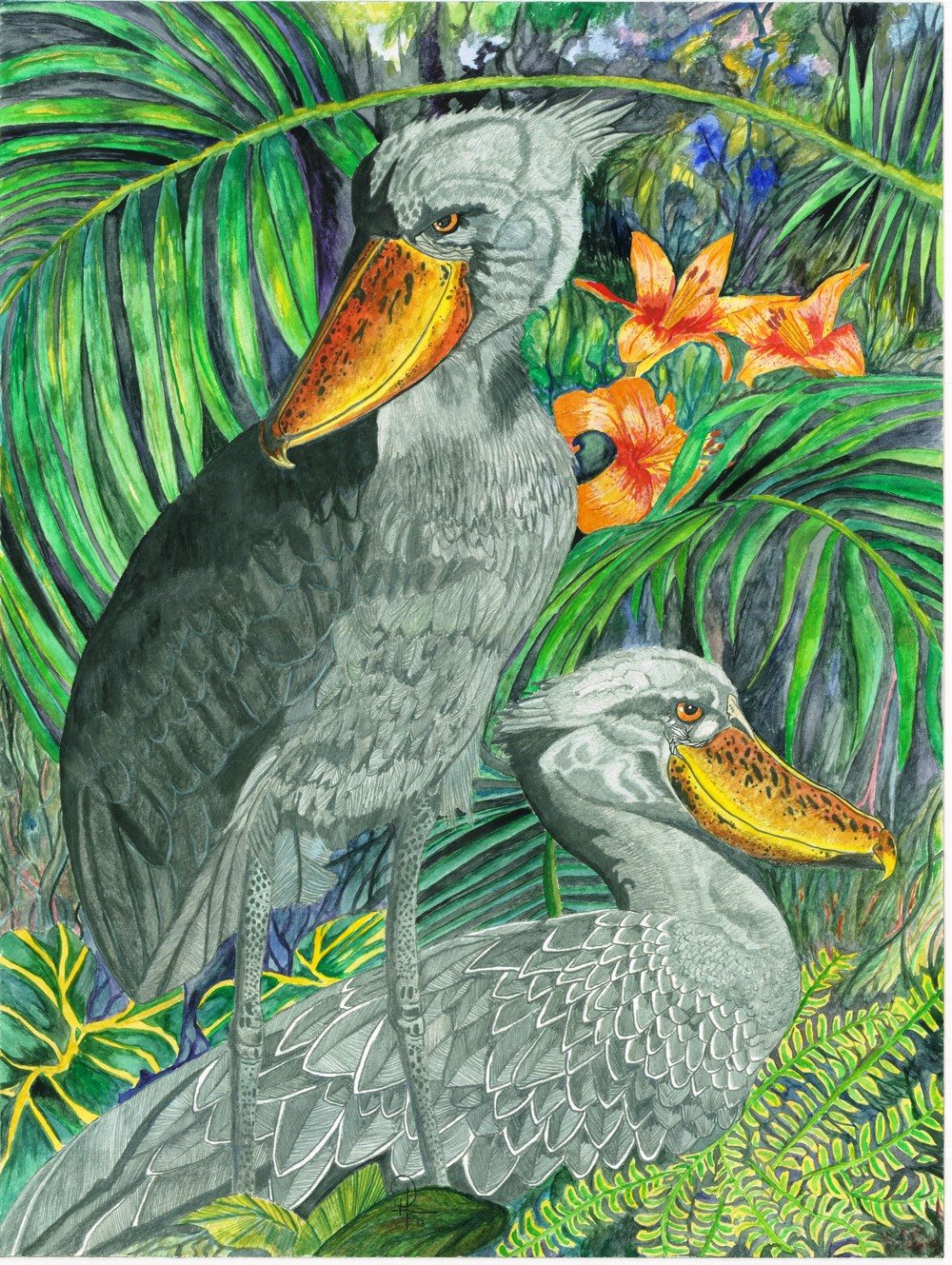 DougHiser_Shoebills_16x20_watercolor.jpg