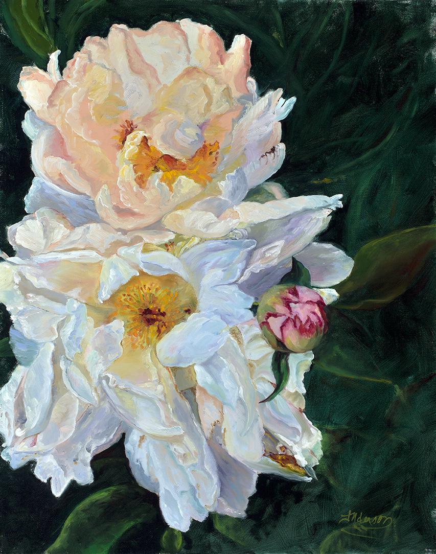 JodyAnderson_Peonies_16x20_oiloncanvas SOLD and not available for show.jpg