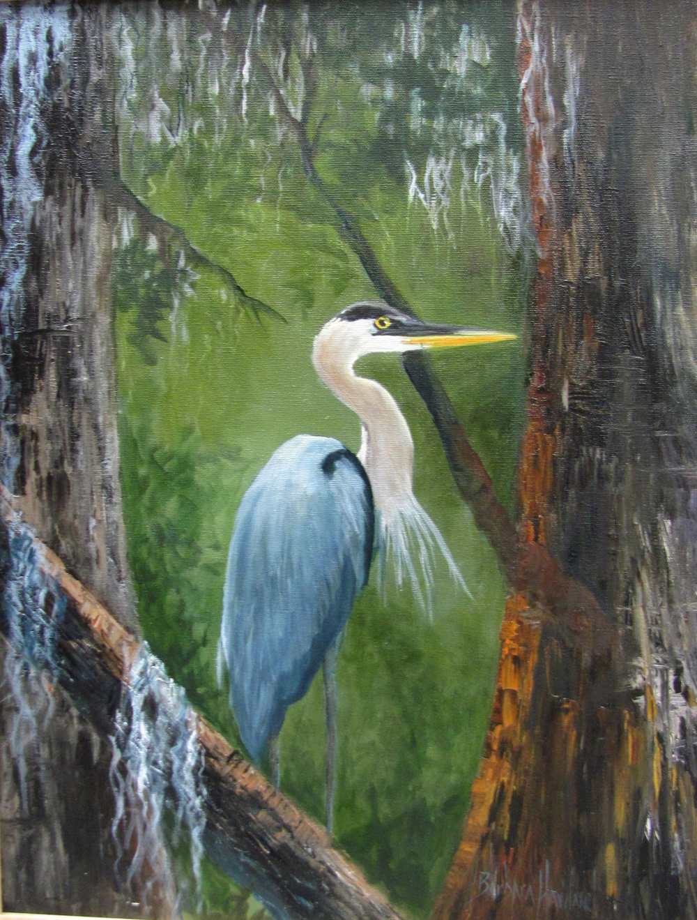 Barbara Haviland Blue Heron 20 x 16 oil canvas.JPG