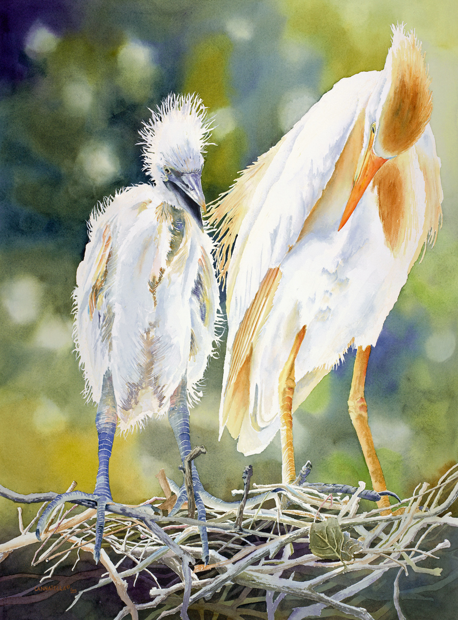 "FIRST PLACE:  ""I've Got it Ma""  by Debbie Cannatella   Watercolor"