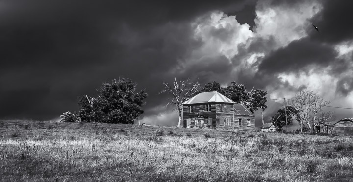 $500 First Place Award • STORM'S COMIN'  •  copyright Beckey Zajicek, photographer