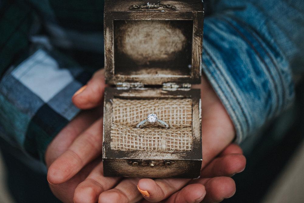 Frankie-Sarah-Engagement-New-93.jpg