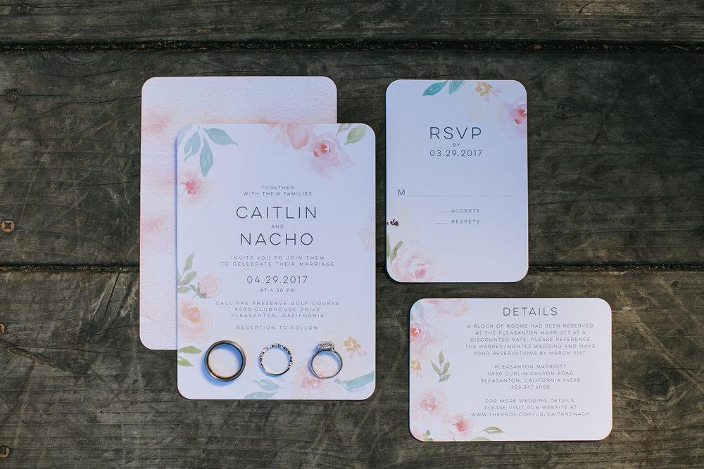 Nacho-Caitlin-Wedding-6.jpg