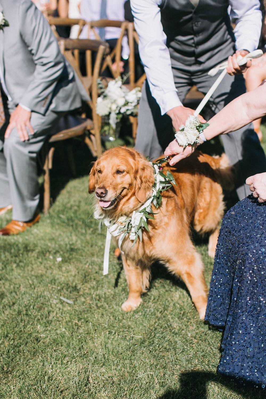 Nacho-Caitlin-Wedding-172.jpg