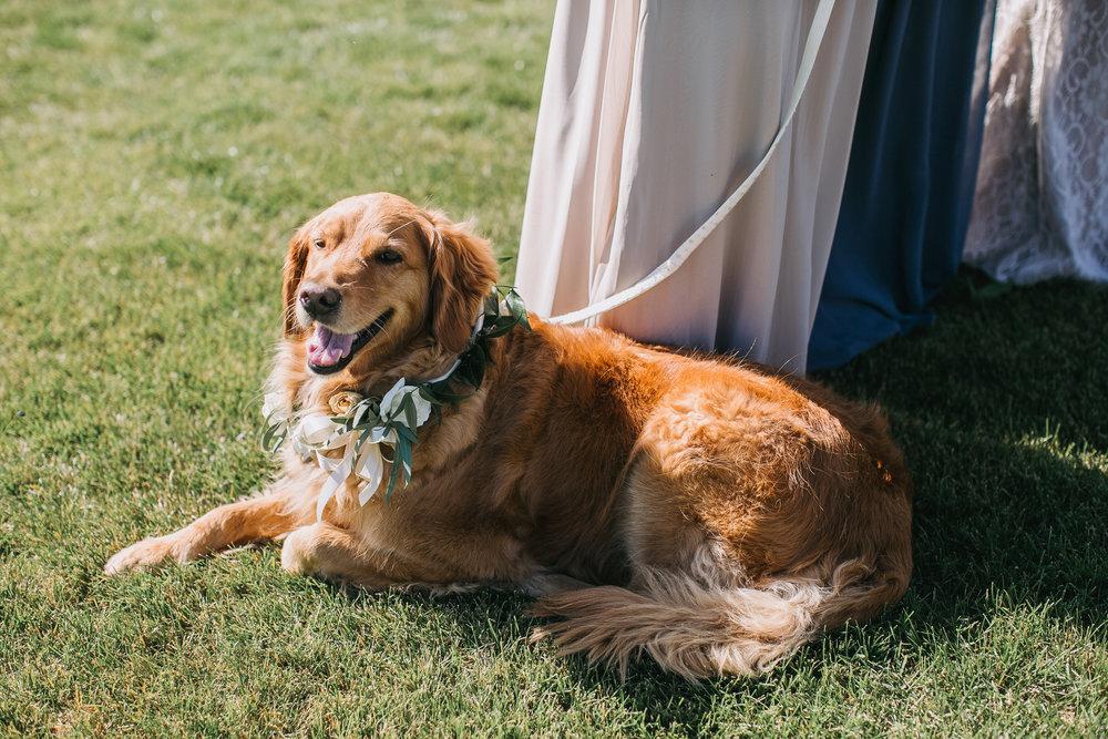 Nacho-Caitlin-Wedding-226.jpg